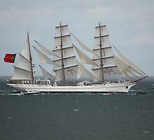 Sagres - Tall Ships Belfast by Philip Bateman