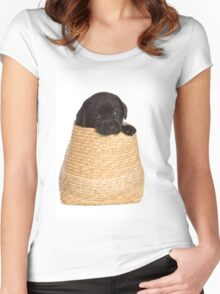 black labrador puppy in a basket Women's Fitted Scoop T-Shirt