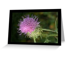 Weeds Can Be Beautiful Too! Greeting Card