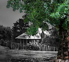 Beyer's Cottage by garts