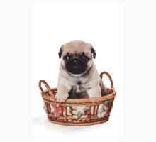 Beige pug puppy One Piece - Short Sleeve