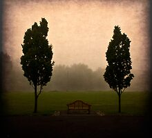 Morning Mist by Mojuba