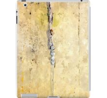 Laureana Cilento: wall with electric wire of the baronian building iPad Case/Skin
