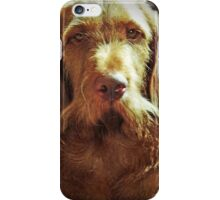 D for Dog iPhone Case/Skin