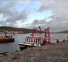 Evening at Lyme Harbour by lynn carter