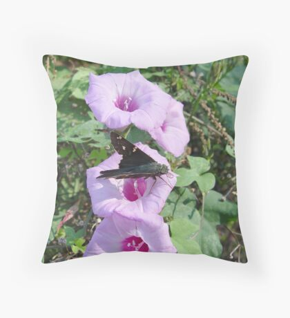Long-tailed Blue Skipper in Wild Morning Glory Throw Pillow
