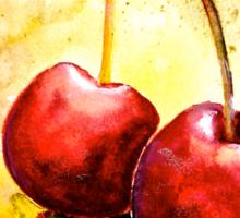 Cherries..Two... Sticker