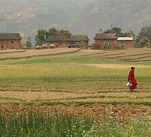 Village Farm Life by Brooke Findlay
