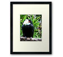 Ubud, Bali Framed Print
