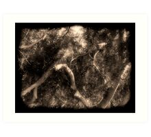 Study in Light and Shadow: Lush Foliage and Tangled Branches in Black and White #2 Art Print