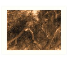 Study in Light and Shadow: Lush Foliage and Tangled Branches in Sepia #1 Art Print