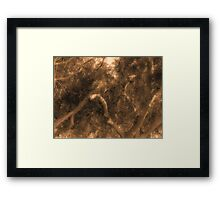Study in Light and Shadow: Lush Foliage and Tangled Branches in Sepia #1 Framed Print