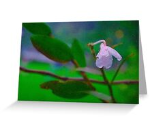 Lonely Flower Greeting Card