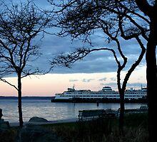 Framed Ferry Boat by starlitewonder