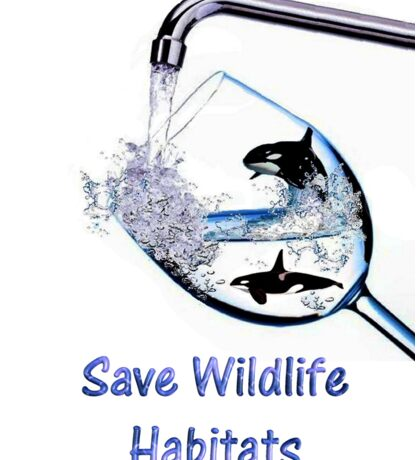 Save Wildlife Habitats Sticker