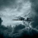Airborne by Michael  Bermingham