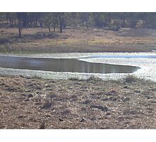 Water Hole Photographic Print
