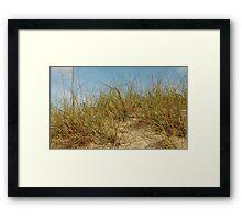 Carolina Dune Framed Print