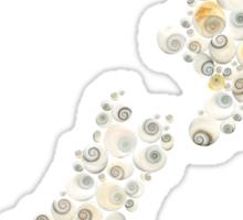 New Zealand cats eye shells  Sticker
