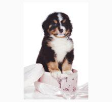 Bern Shepherd puppy in a box Kids Tee