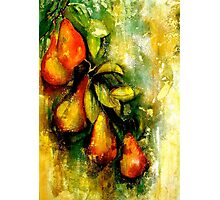 Espalier..A Still Life Photographic Print