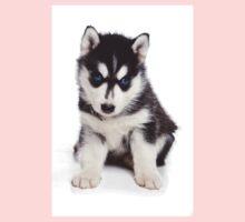 Husky Puppy Kids Clothes