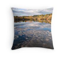 Mirror mirror on the wall! - Daylesford Throw Pillow