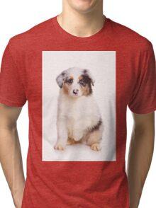 Cute Puppy Australian Shepherd Tri-blend T-Shirt
