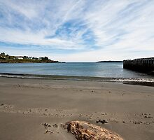 Witless Bay by Stephen Rowsell