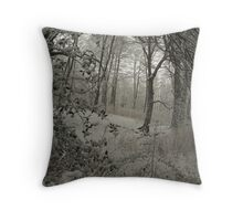 Silverburn, Fife Throw Pillow