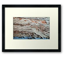 A Lick of Paint Framed Print