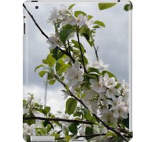 Wellwood's Spring Apple Blossoms - 2 iPad Case/Skin