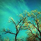 golden branches by Angel Warda