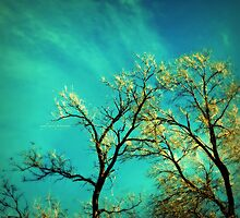 golden branches by Angel Warda