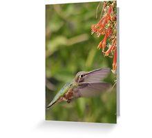 Mmm, Nectar! Greeting Card