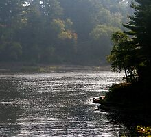 Misty Morning In Wisconsin Dells by kkphoto1