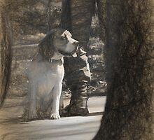 dog taking a break by Adrian Bud