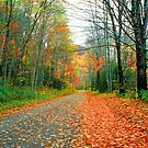AUTUMN ON BIG COVE ROAD* by Chuck Wickham