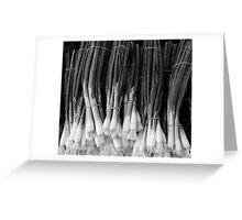 Green Onions Greeting Card