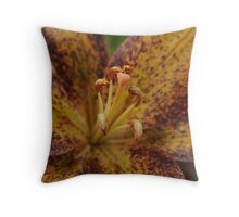 Macro Orange Throw Pillow