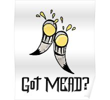 Got Mead? Poster