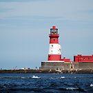 Longstone lighthouse by shakey