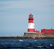 Longstone lighthouse by shakey