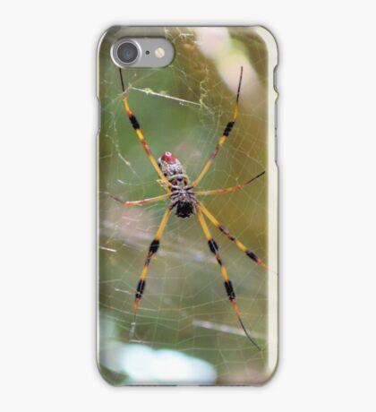 Golden Silk Orb Weaver 2 iPhone Case/Skin