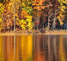 Golden Reflections by Deb Snelson