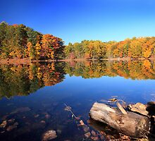 Autumn Reflections by Deb Snelson