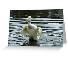 silly duck Greeting Card