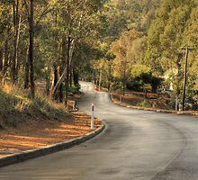 Grey's Hill, Bridgetown, WA. by Elaine Teague