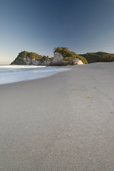Whiritoa Beach by Michael Treloar