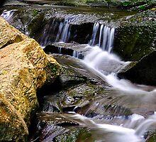 Fillmore Glen State Park IX by PJS15204